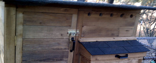 Pollo Palace - Naves Family Chicken Coop