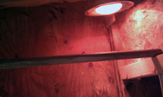 arduino-chicken-coop-interior-heat-lamp-slideshow-sm