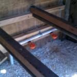 Chicken coop Interior - lower roosts