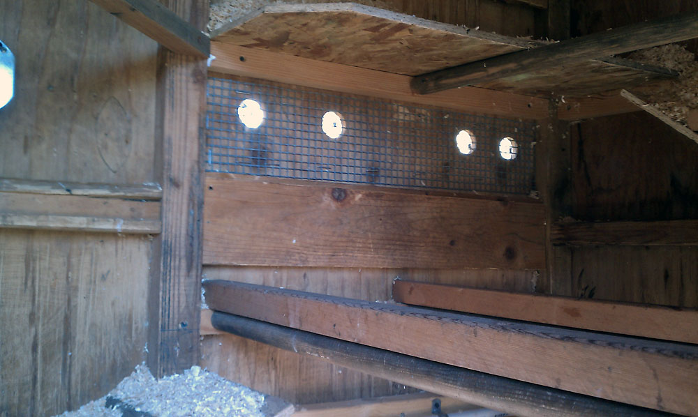 Chicken Coop Interior Vents (rear)